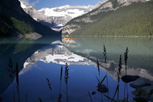 MP3 self hypnosis cures to help you stop smoking, lose weight, cure fears, cure phobias, cure addiction, headaches, cure shyness